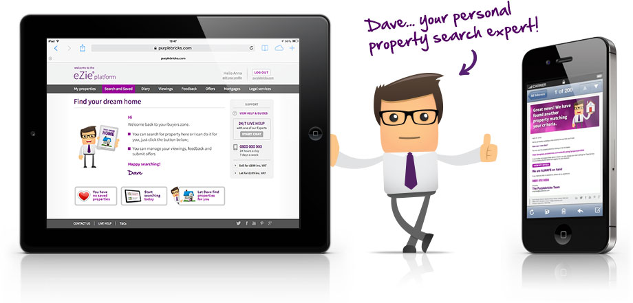 dave-your personal property search expert